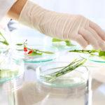 fiirv - ricerca per la vita - acqua - bio