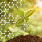 biotecnologie fiirv - ricerca per la vita
